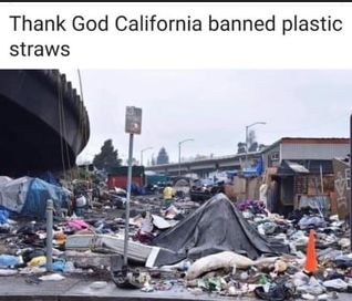 Thank God California Banned Plastic Straws